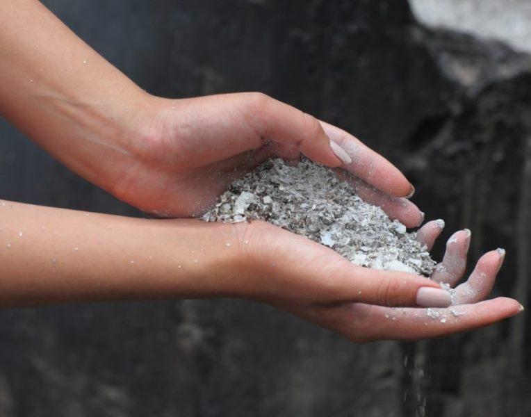 Виды удобрений из пепла – применение пепла в качестве защиты растений