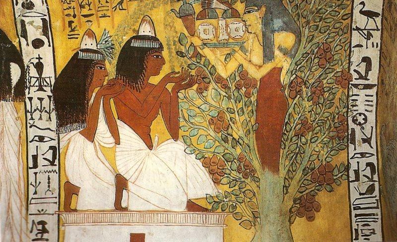 Акакция в Древнем Египте